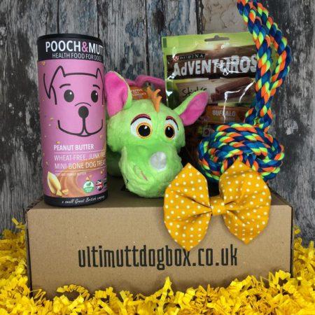 Monthly Dog Box